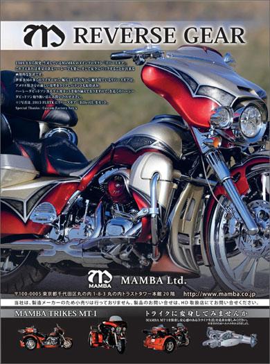 2013 FLTRX Billet6S